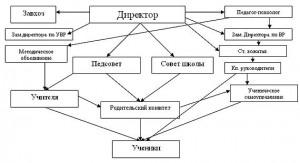 StrukturaShkol